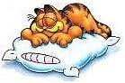Garfield napping
