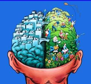 the brain one side consist of fun the other side consist of work